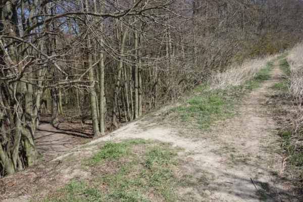 Kudy dál... Nejprve jsem zvolila horní cestu, ale bylo to jako v pohádce - snadná cesta vede do záhuby. Tahle vedla do polí.