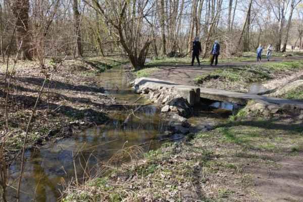A tady už zase trošku přírody. Vpravo vede Litovický potok, vlevo je rameno, které napájí Litovický rybník.