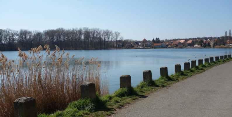 Litovický rybník.