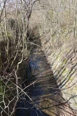 U výpustě z rybníka opouštím cestu...