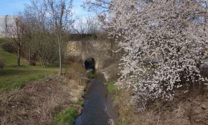Litovický potok mizí pod viaduktem Buštěhradské dráhy a dál protéká zahrádkářskou kolonií.