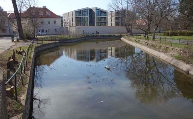 Vokovický rybník - dnes nevzhledná a zanesená betonová nádrž musel být kdysi příjemný rybník uprostřed návsi ve Starých Vokovicích.
