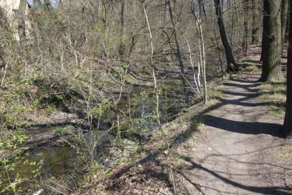 Ze Břví se dá jet podle potoka lesní pěšinou.