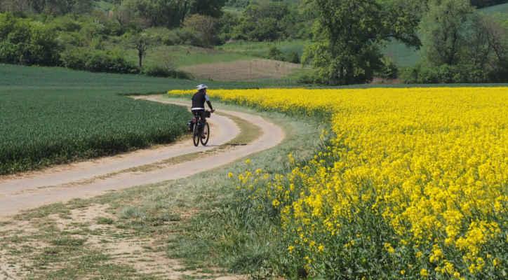 Jedeme směr Svatobořice-Mistřín, Šardice....na mapě jsme si našli polní cestu...