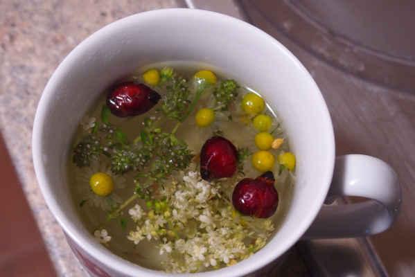 čaj z bylinek co Iveta natrhala cestou Foto Iveta