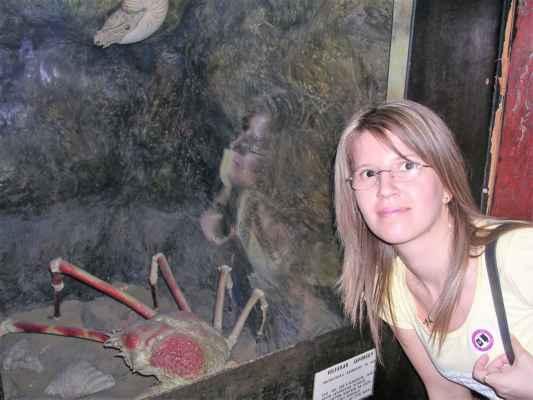 Velekrab japonský (latinsky Macrocheira kaempferi) je největší žijící členovec. Předpokládá se, že se může dožít více než 100 let. Žije v Tichém oceánu v okolí Japonských ostrovů v hloubce až 600 m. Rád využívá přirozené úkryty jako průduchy, průrvy a díry ve skalách na mořském dně. Rozpětí nohou velekraba japonského může dosahovat téměř 4 m. Délka těla je  60 cm, šířka 38 cm a dosahuje hmotnosti až 20 kg. Tento největší krab na světě je jedlý a je považován za vzácnou specialitu.