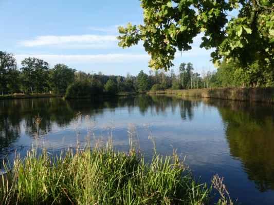 Od rybníka Budka půjdeme po místní silničce k obci Pístina.