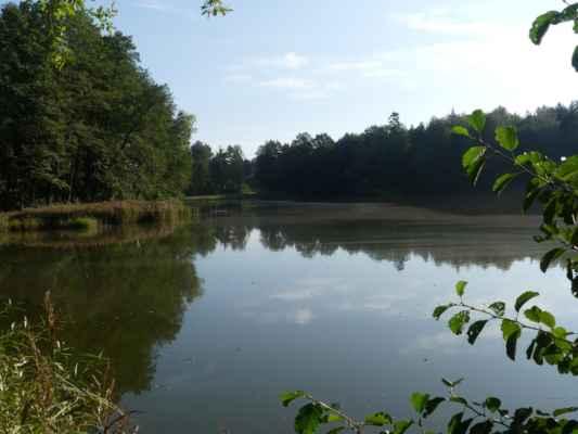Rybník Stávek.