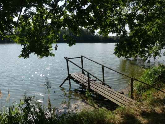 Rybník Medenice.
