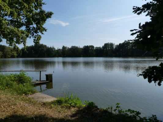 Ještě rybník Medenice.
