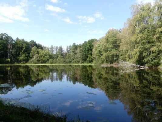 To už jsme zahnuly ze silnice na druhou stranu, rybník Malá Žabka.