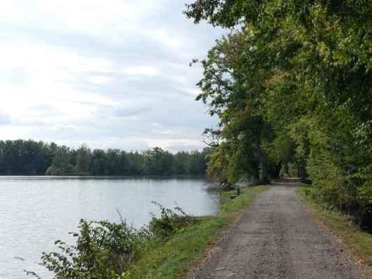 Na hráz rybníka Žebrákov jsme si jen zašly, pak jsme pokračovaly k rybníku Velký Čáp.