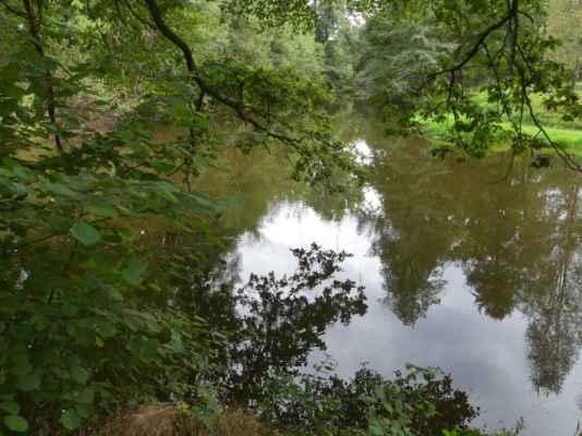 Zlatá stoka napájí řadu rybníků – Svět, Velký Tisý a další, protéká městem Třeboň, obtéká rybník Rožmberk, Záblatský rybník, Lomnici nad Lužnicí. Dále teče na sever k Veselí nad Lužnicí, kde se vlévá pod Horusickým rybníkem do výtokové stoky z tohoto rybníka, která se pak vlévá do Lužnice. Podrobně viz https://cs.wikipedia.org/wiki/Zlat%C3%A1_stoka